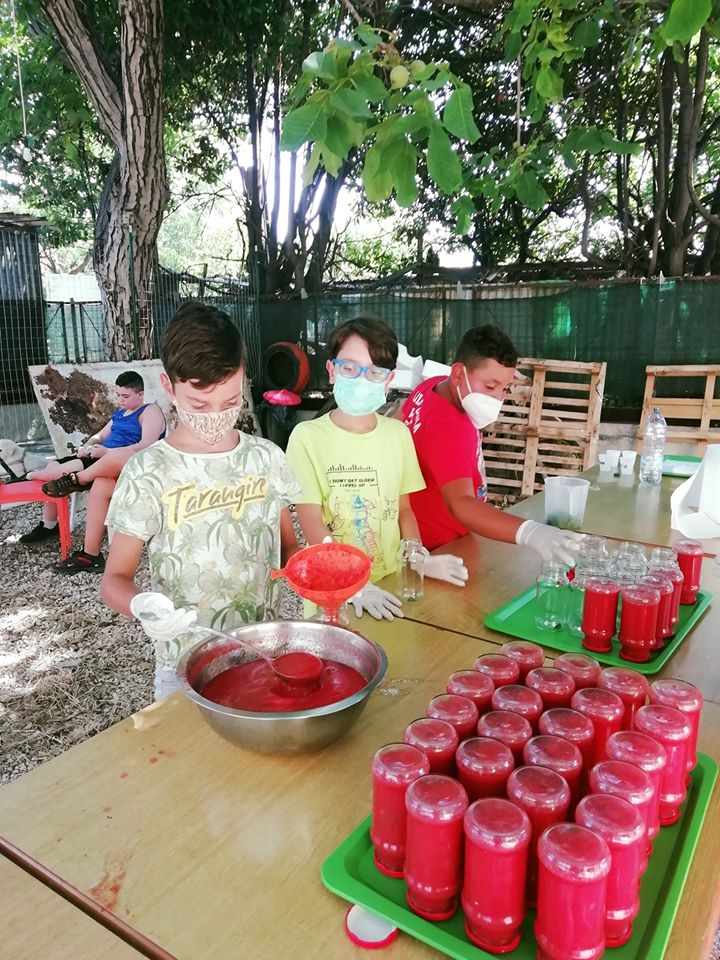 labbraccio campi di volontariato 2020